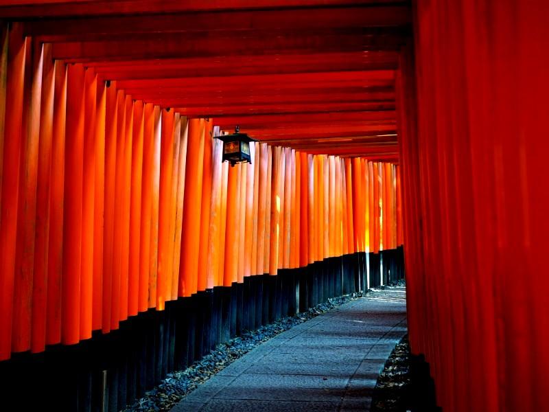 京都伏見稲荷の千本鳥居写真を撮影したよ!