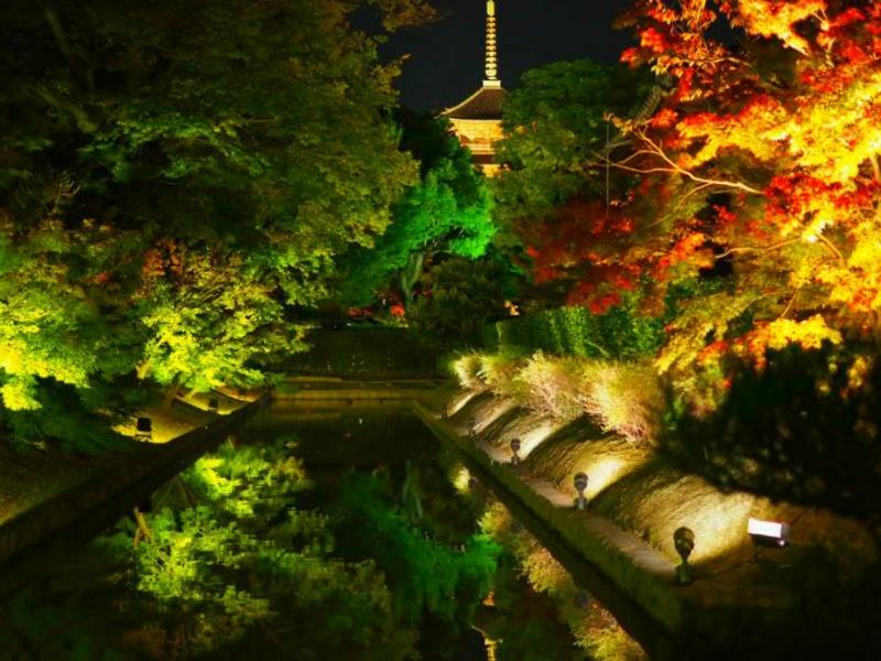 京都世界遺産東寺の夜間ライトアップ混むのは嫌!混雑回避方法は?
