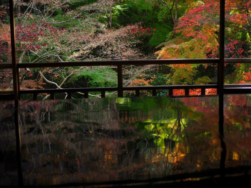 秋の特別拝観【京都の瑠璃光院】拝観料2000円の価値あるの?